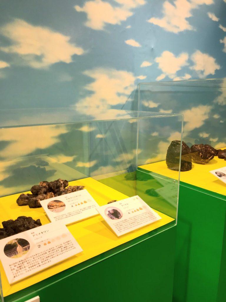 うんこ展示会の動物の本物のうんこ画像
