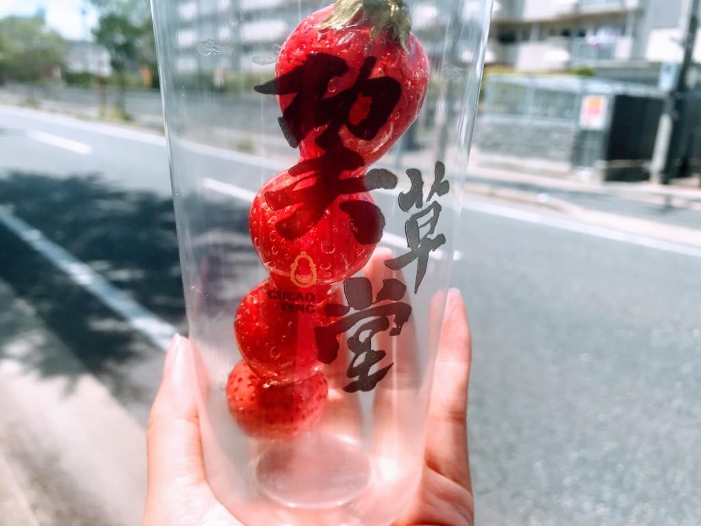カンフーソウドウ姪浜店のイチゴあめの画像